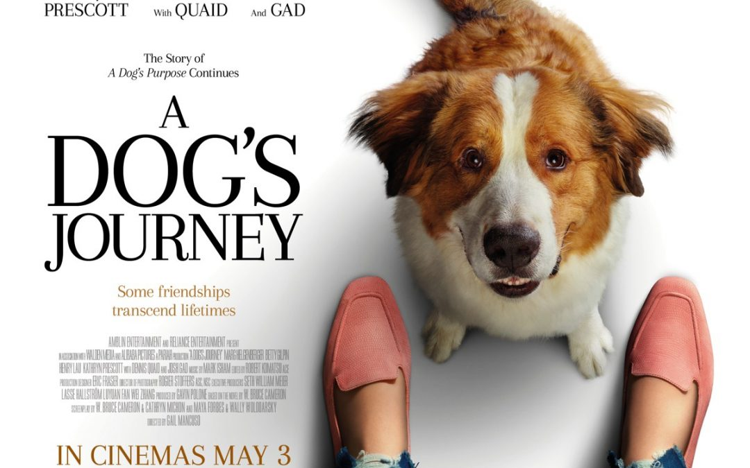 A Dog's Journey Review