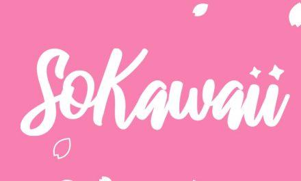 SoKawaii August Box Review