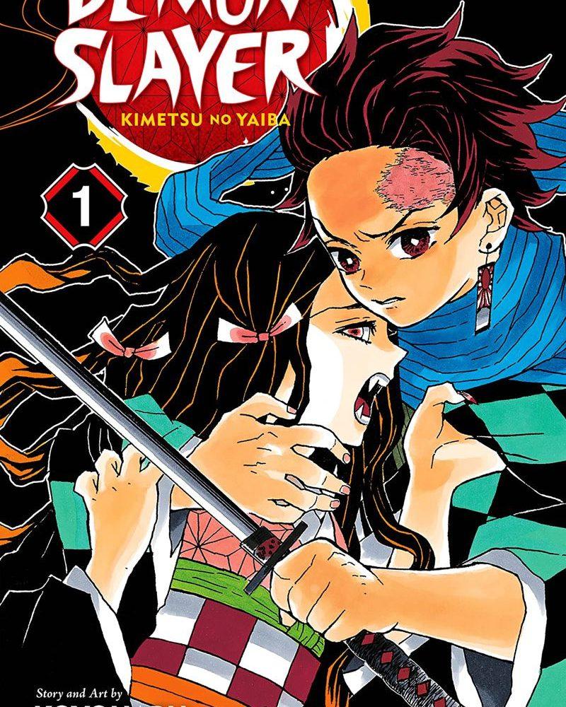 Demon Slayer: Kimetsu no Yaiba, Vol. 1 Review